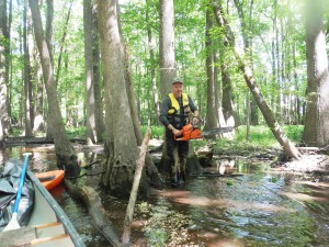 Scouts clear section of Jeffries for canoeing