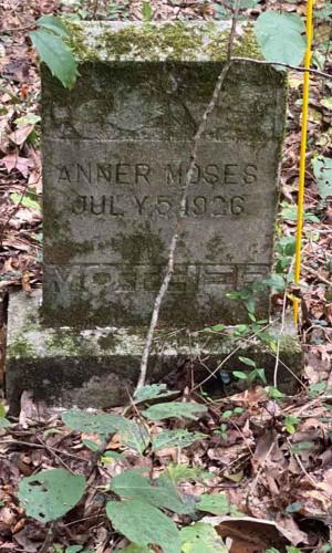 Historic Pee Dee cemeteries discovered