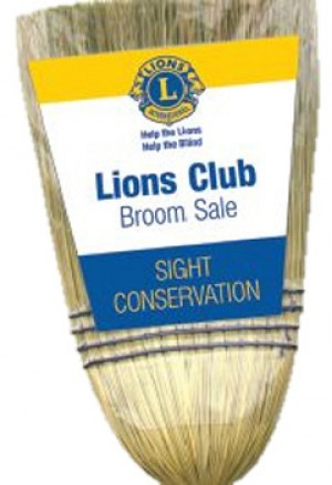 Evening Lions selling brooms