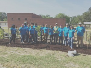Duke Energy volunteers  plant trees at Briggs School