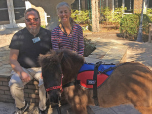 Visit by therapy horse  takes McLeod Hospice  residents on a joy ride