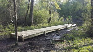 Scout builds dock at Lee State Park