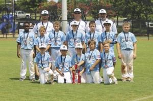 Dixie Youth State Tournament