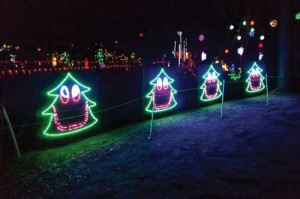Lights 4 Paws -Humane society light show raises funds for animal care